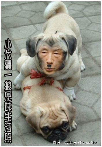 chaoqiangderibenjundui28.jpg
